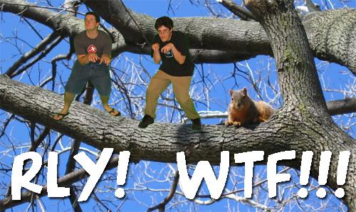 rly-wtf1